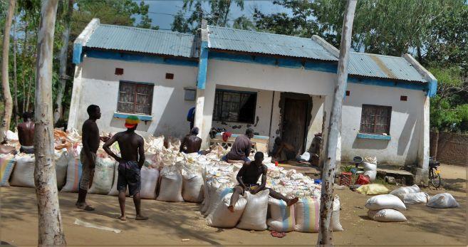 Maize Merchants